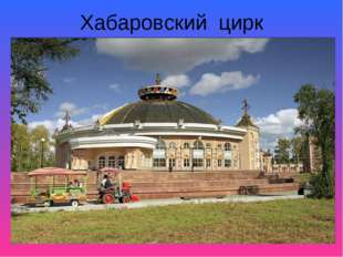 Хабаровский цирк