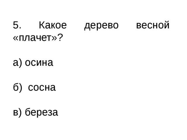 5. Какое дерево весной «плачет»? а) осина б) сосна в) береза