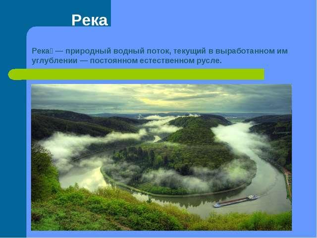 Река Река́— природный водный поток, текущий в выработанном им углублении— п...