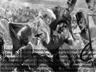 Поводом к войне послужило Сараевское убийство 28 июня 1914 года австрийского