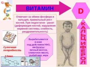 ВИТАМИН D Отвечает за обмен фосфора и кальция, правильный рост костей. При не