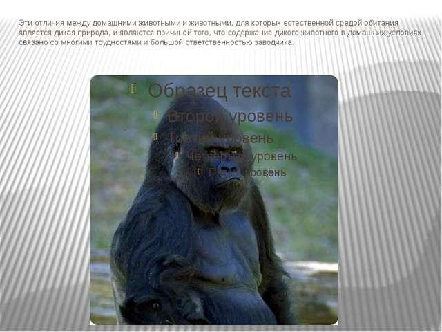 Эти отличия между домашними животными и животными, для которых естественной с...