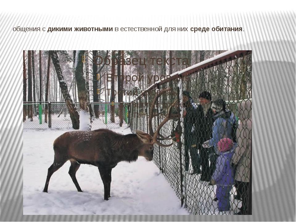 общения с дикими животными в естественной для них среде обитания.