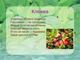 Клюква О сколько бусинок багряных Рассыпано — не сосчитать! Мхи на болотистых