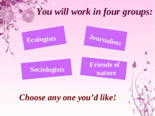 You will work in four groups: Ecologists Journalists Sociologists Friends of