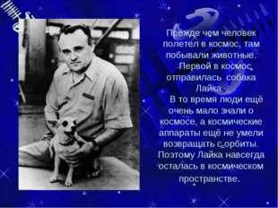 Прежде чем человек полетел в космос, там побывали животные. Первой в космос о