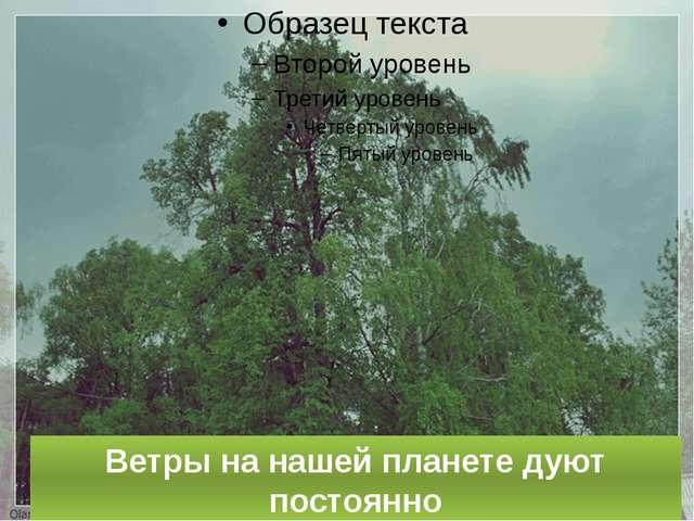 Ветры на нашей планете дуют постоянно