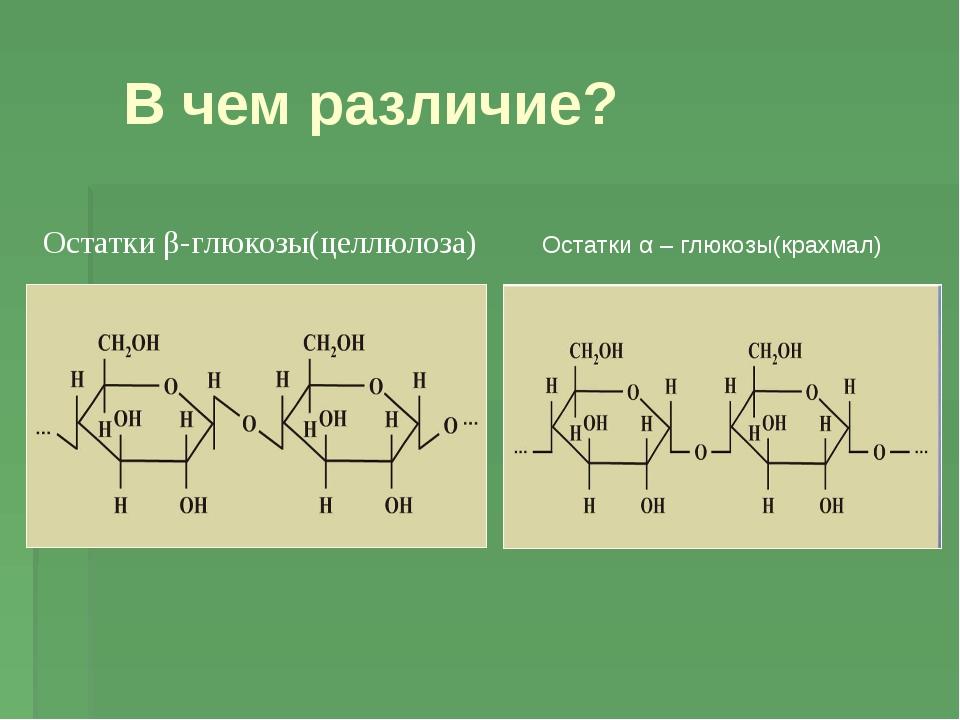 В чем различие? Остатки α – глюкозы(крахмал) Остатки β-глюкозы(целлюлоза)