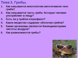 Тема 3. Грибы. Как называется многолетнее вегетативное тело гриба? Как называ