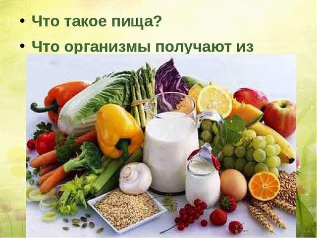 Что такое пища? Что организмы получают из пищи?