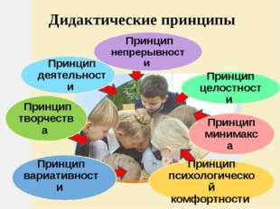 Дидактические принципы Принцип непрерывности Принцип деятельности Принцип тв