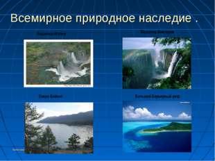 Колесникоова А.А. Всемирное природное наследие . Водопад Игуасу Водопад Викто