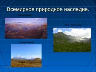 Колесникоова А.А. Всемирное природное наследие. Большой каньон Вулканы Камчат