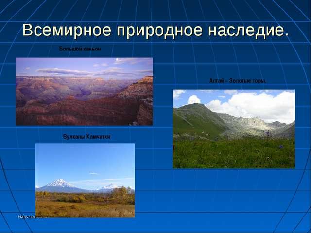 Колесникоова А.А. Всемирное природное наследие. Большой каньон Вулканы Камчат...