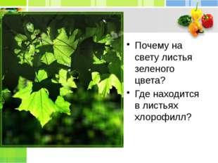 Почему на свету листья зеленого цвета? Где находится в листьях хлорофилл?