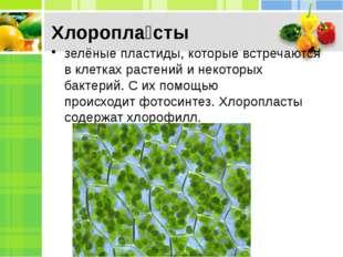 Хлоропла́сты зелёныепластиды, которые встречаются в клетках растений и некот