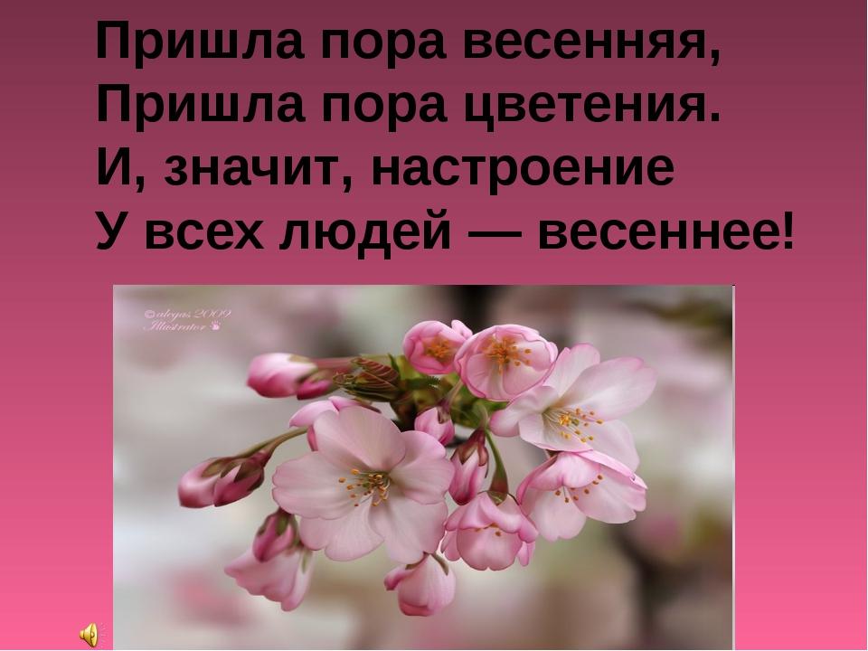 Пришла пора весенняя, Пришла пора цветения. И, значит, настроение У всех люд...