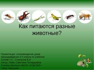 Как питаются разные животные? Презентация -сопровождение урока природоведения