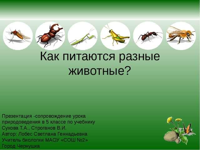 Как питаются разные животные? Презентация -сопровождение урока природоведения...