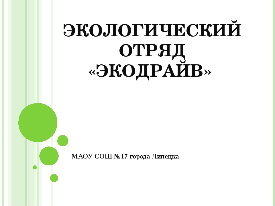 ЭКОЛОГИЧЕСКИЙ ОТРЯД «ЭКОДРАЙВ» МАОУ СОШ №17 города Липецка