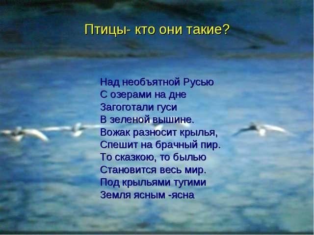 Над необъятной Русью С озерами на дне Загоготали гуси В зеленой вышине. Вожак...