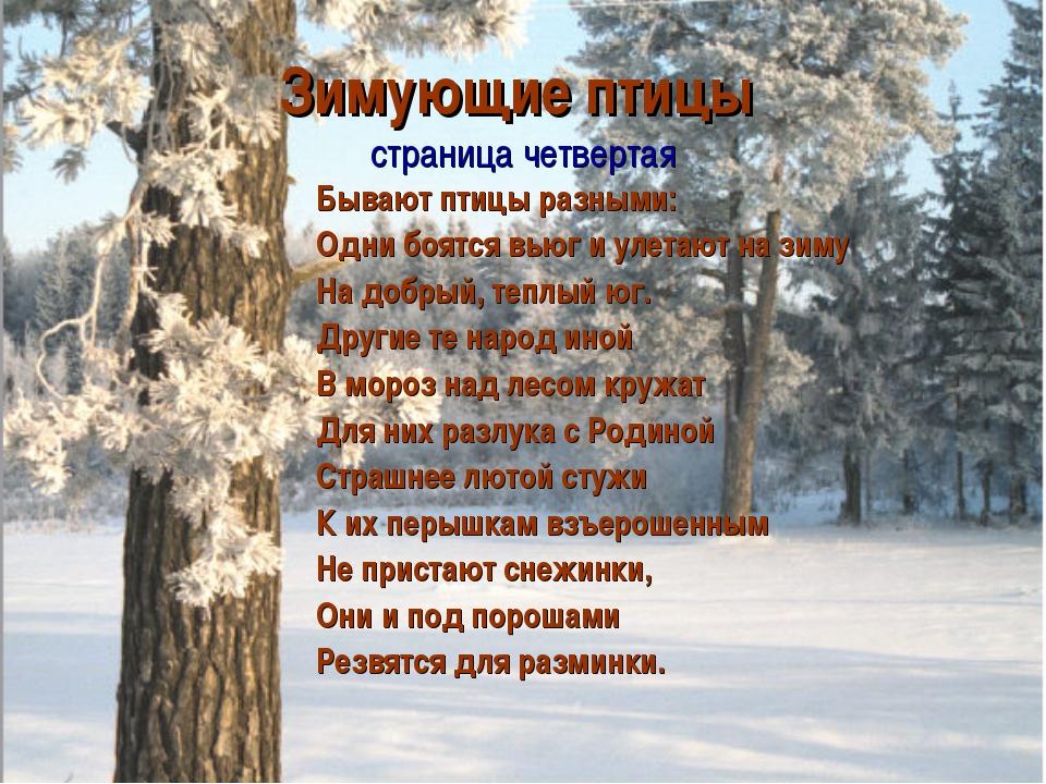 Зимующие птицы страница четвертая Бывают птицы разными: Одни боятся вьюг и ул...