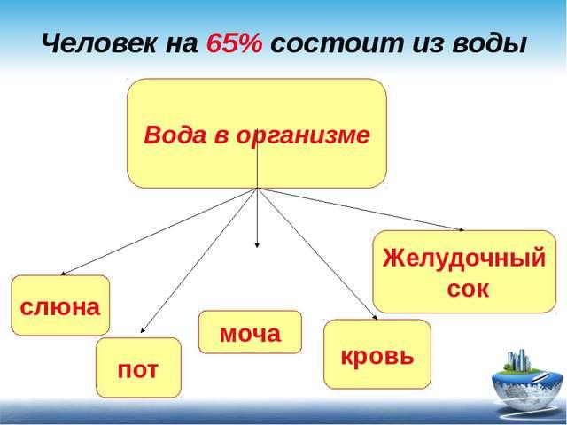 Человек на 65% состоит из воды Вода в организме слюна пот моча кровь Желудочн...