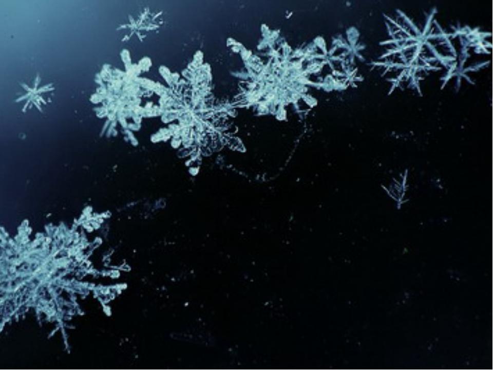 Вот белым легли покрывалом На землю родную снега… А время придет – все растае...