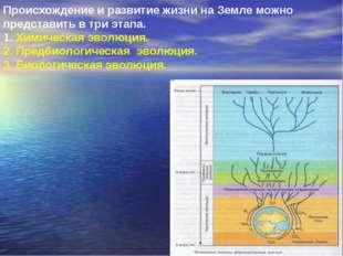 Происхождение и развитие жизни на Земле можно представить в три этапа. 1. Хим