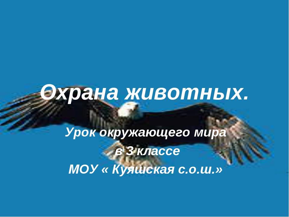 Охрана животных. Урок окружающего мира в 3 классе МОУ « Куяшская с.о.ш.»