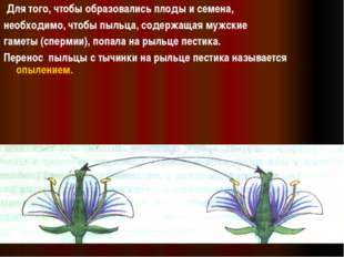 Для того, чтобы образовались плоды и семена, необходимо, чтобы пыльца, содер