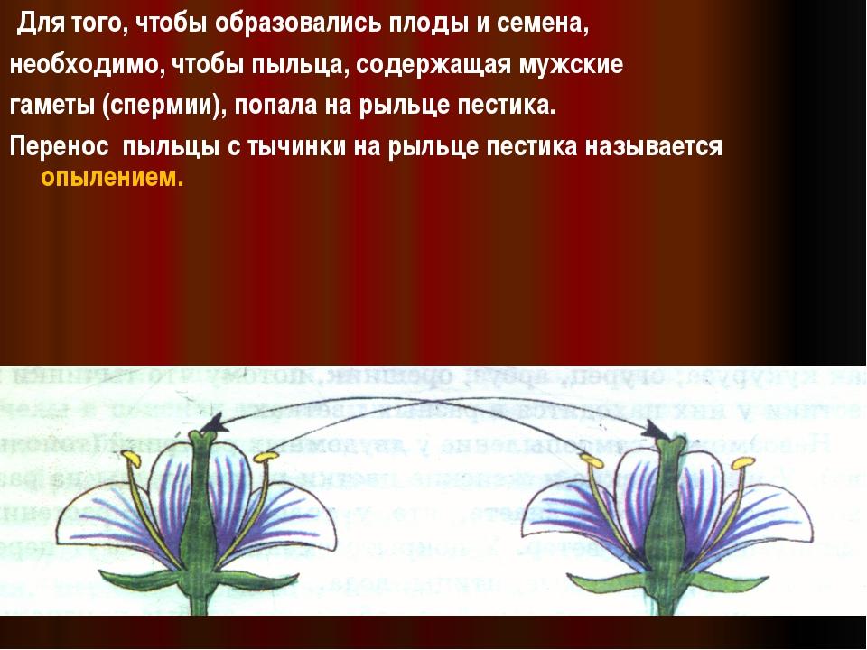 Для того, чтобы образовались плоды и семена, необходимо, чтобы пыльца, содер...