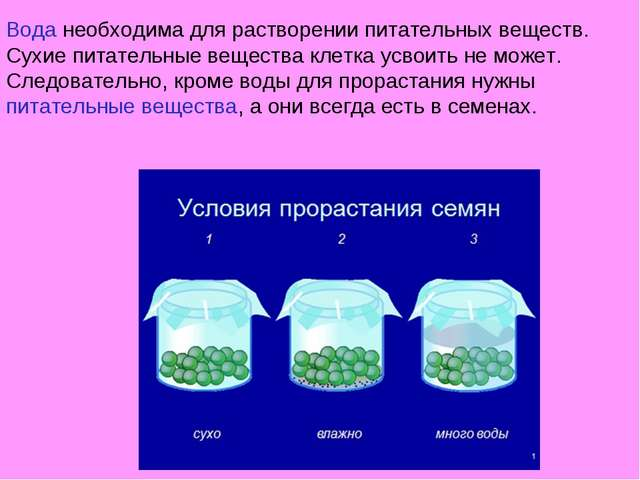Вода необходима для растворении питательных веществ. Сухие питательные вещест...