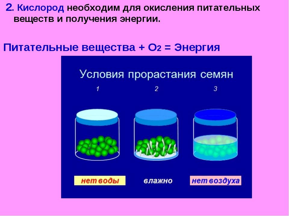 2. Кислород необходим для окисления питательных веществ и получения энергии....