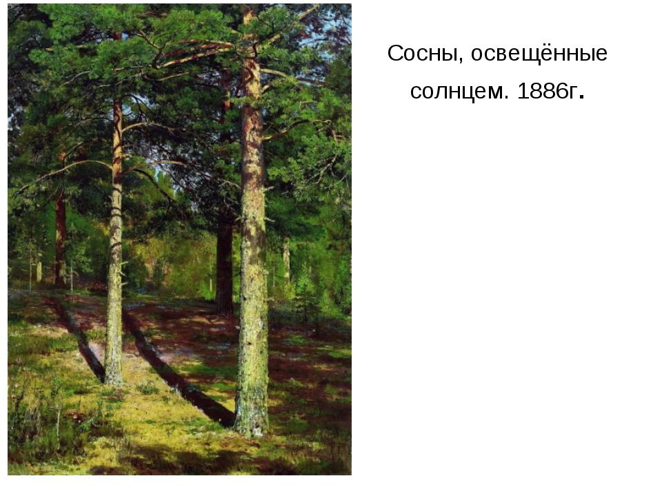 Сосны, освещённые солнцем. 1886г.