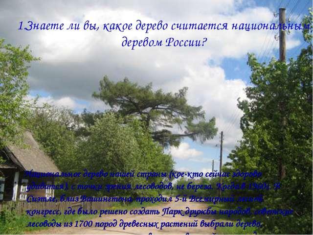 1.Знаете ли вы, какое дерево считается национальным деревом России? Националь...