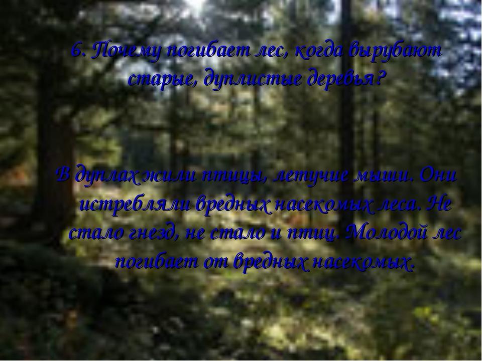 6. Почему погибает лес, когда вырубают старые, дуплистые деревья? В дуплах жи...