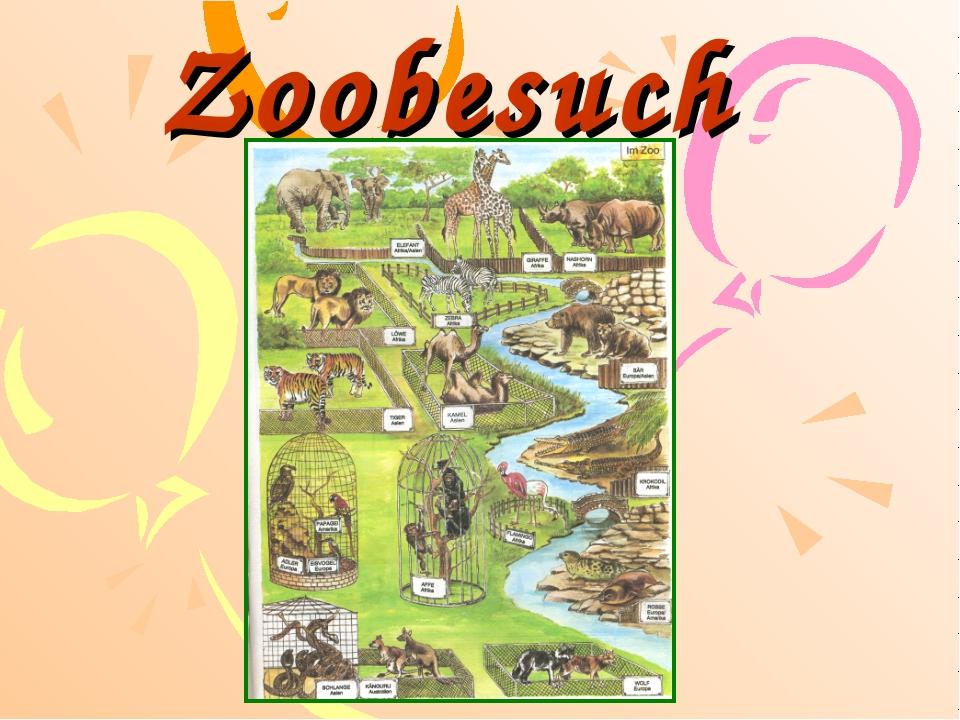 Zoobesuch
