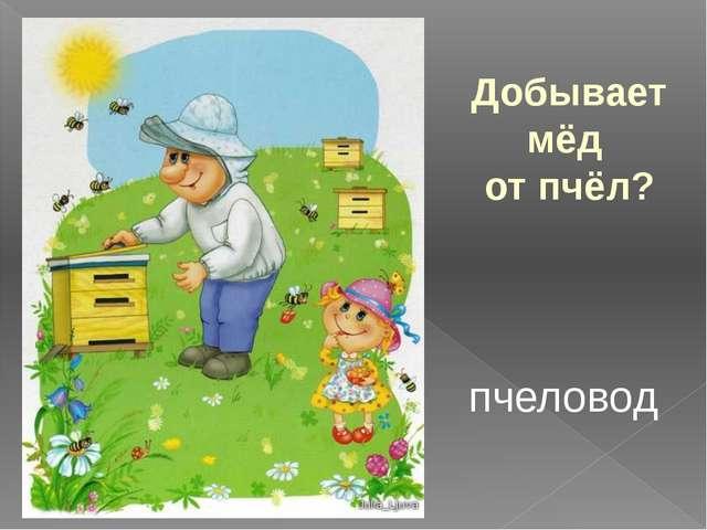 Добывает мёд от пчёл? пчеловод
