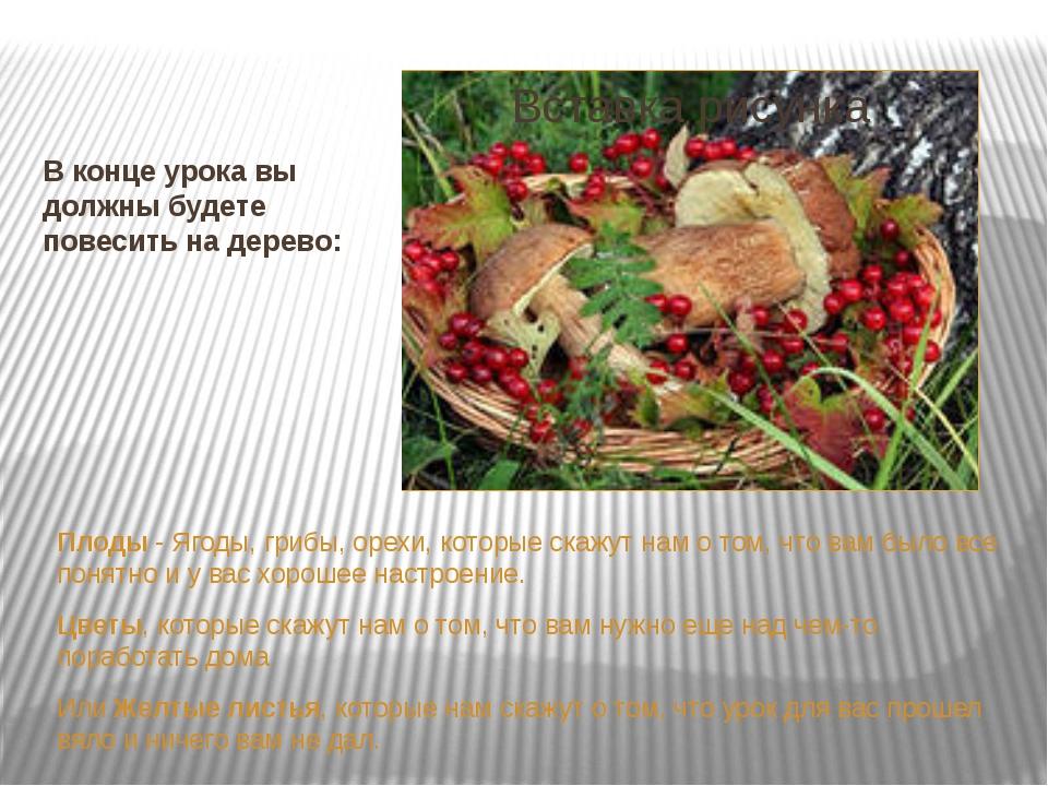 В конце урока вы должны будете повесить на дерево: Плоды - Ягоды, грибы, орех...