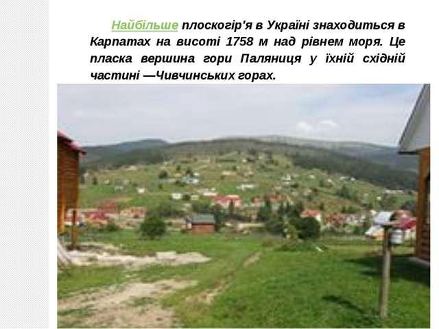 Найбільше плоскогір'я в Україні знаходиться в Карпатах на висоті 1758 м над р...