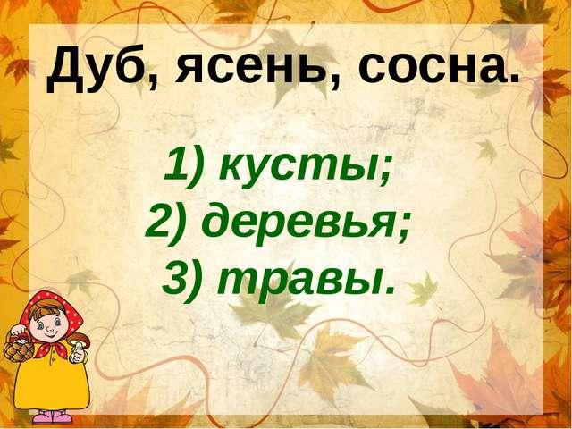 1) кусты; 2) деревья; 3) травы. Дуб, ясень, сосна.