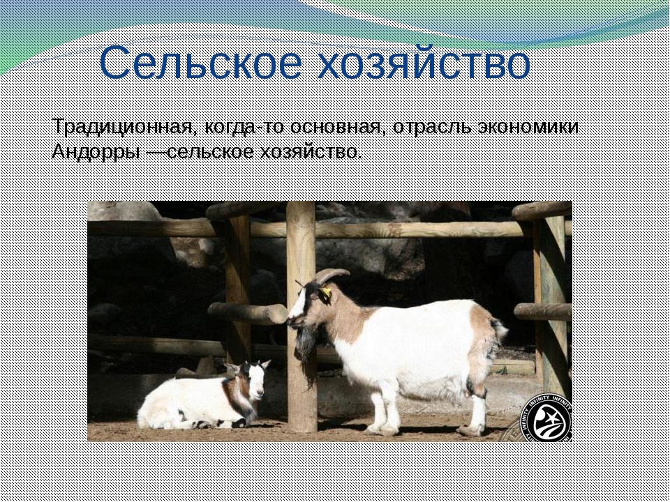 Сельское хозяйство Традиционная, когда-то основная, отрасль экономики Андорр...