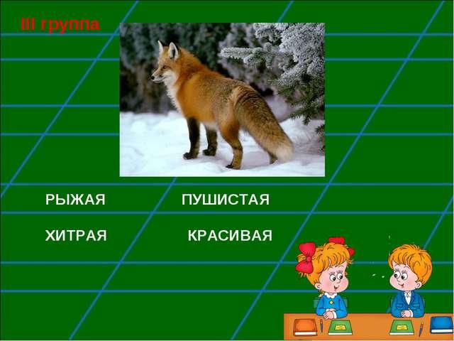 РЫЖАЯ ПУШИСТАЯ ХИТРАЯ КРАСИВАЯ III группа