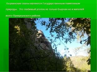 Быркинские скалы являются Государственным памятником природы. Это любимый уг