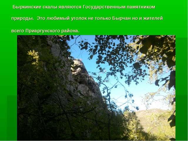 Быркинские скалы являются Государственным памятником природы. Это любимый уг...