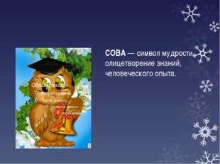 СОВА — символ мудрости, олицетворение знаний, человеческого опыта.