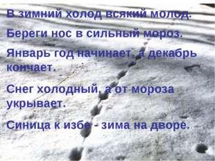 В зимний холод всякий молод. Береги нос в сильный мороз. Январь год начинает,