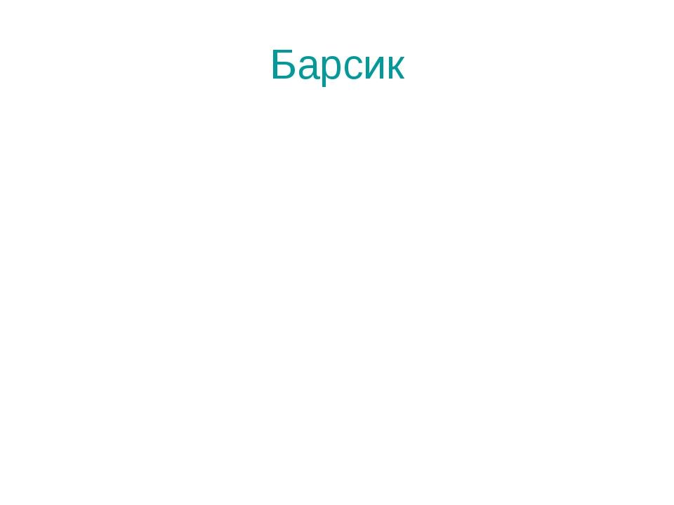 Барсик