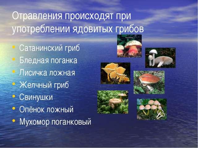 Отравления происходят при употреблении ядовитых грибов Сатанинский гриб Бледн...